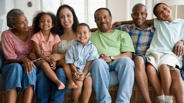 types of families in the psychology of the family